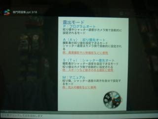 DSC00385_R.JPG